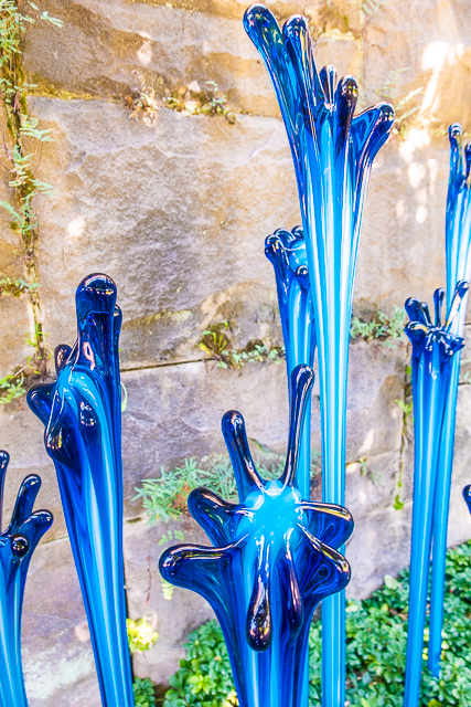 Chihuly at The Biltmore - Pergola Garden Fiori, 2018