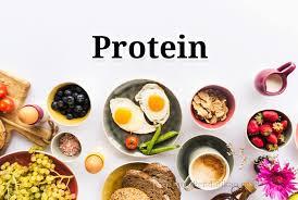 CV. Sumber Proteina