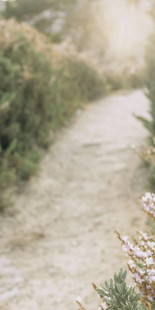 ambiente de leitura carlos romero cronica conto poesia narrativa pauta cultural literatura paraibana saulo mendonca marques lembranca infancia soldado doido meme nostalgia lirica personagens infancia