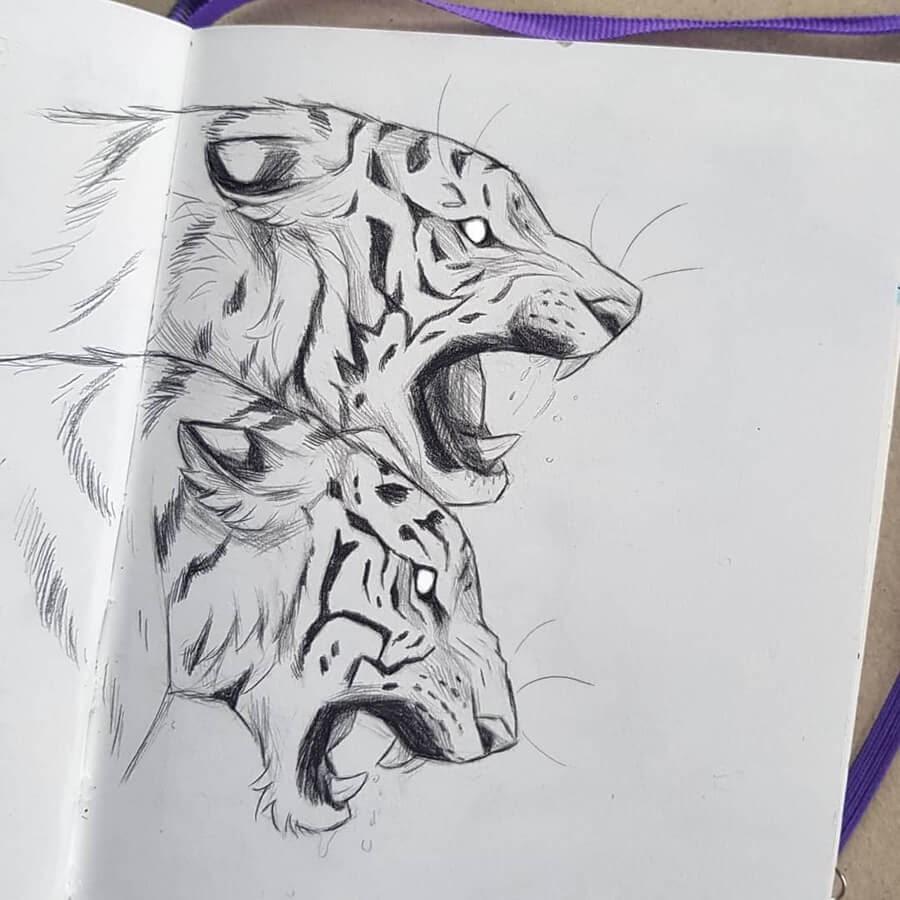 07-Tigers-snarling-Kleevia-www-designstack-co