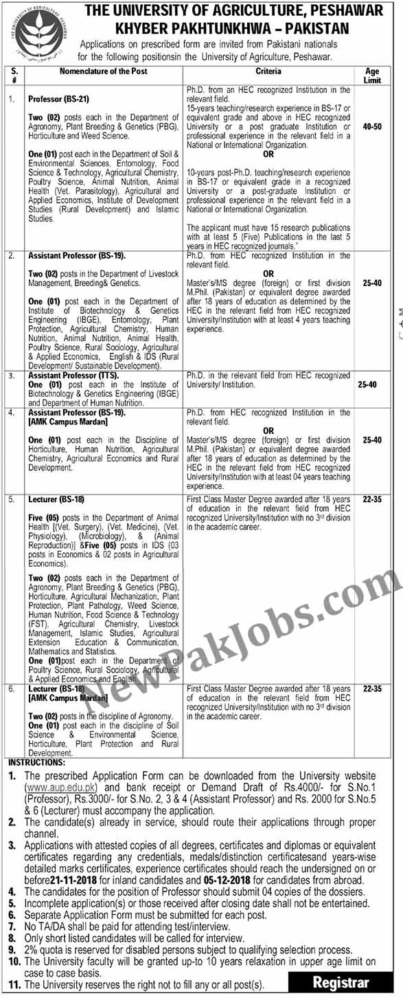 University of Agriculture Peshawar Jobs