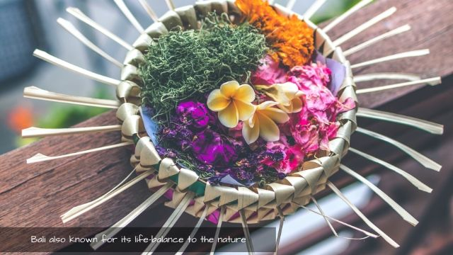 Sacrifice to the nature is the way balinese respect environment