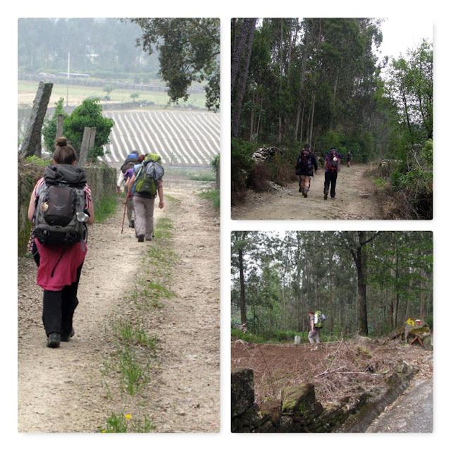 peregrinos de Santiago andando pelo Caminho