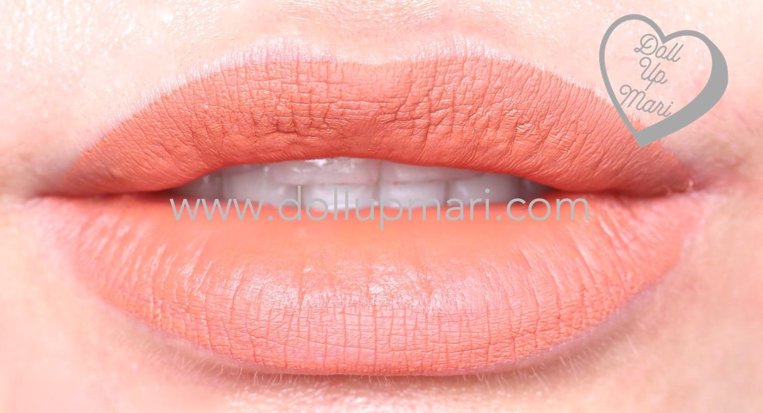 lip swatch of SilkyGirl Matte Junkie Lipcolor (11 Terracotta)