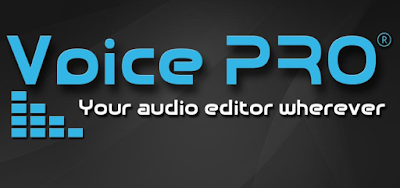 voice pro - hq audio editor apk