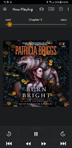 BURN BRIGHT by Patricia Briggs (audiobook)