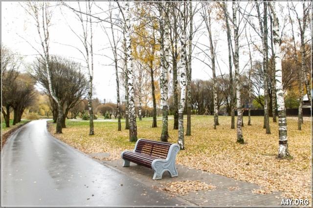 cuối tháng 9 công viên ghế đá lá rụng đầy