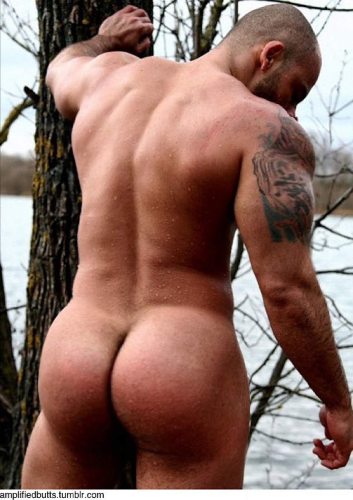 Muscle Men Nude Tumblr