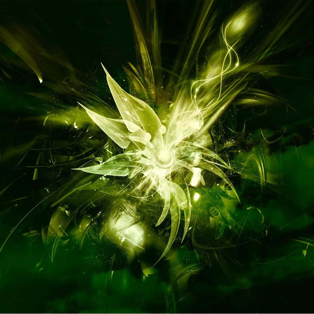 Abstract Flower Images