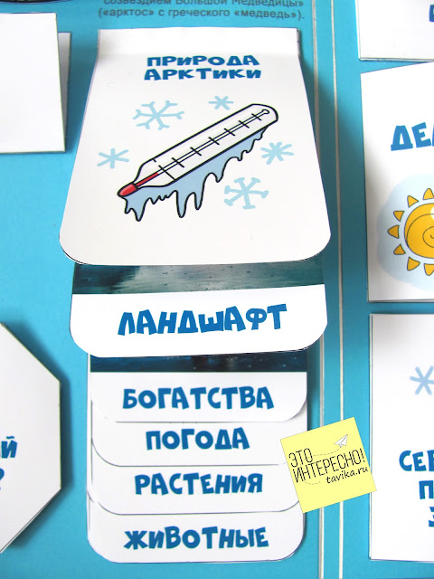 Детям об Арктике с помощью лэпбука