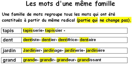 long-mot-de-la-meme-famille-long.jpg