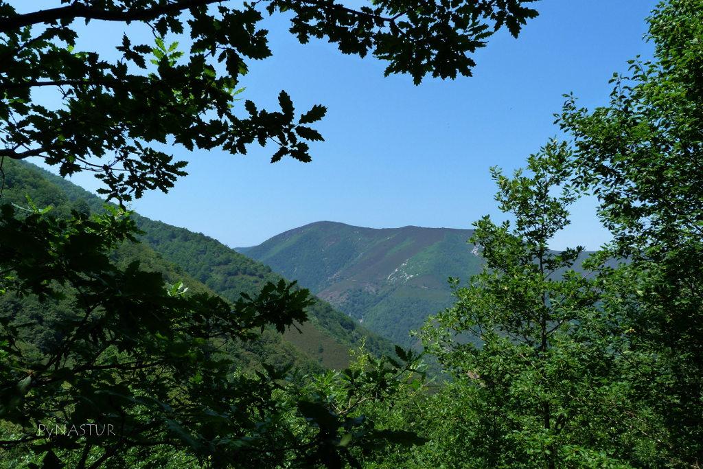 Ruta del Bosque de Moal - Asturias
