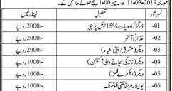Dhq Hospital Kotri Tender Notice