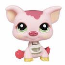Littlest Pet Shop LPSO com Pig (#1696) Pet
