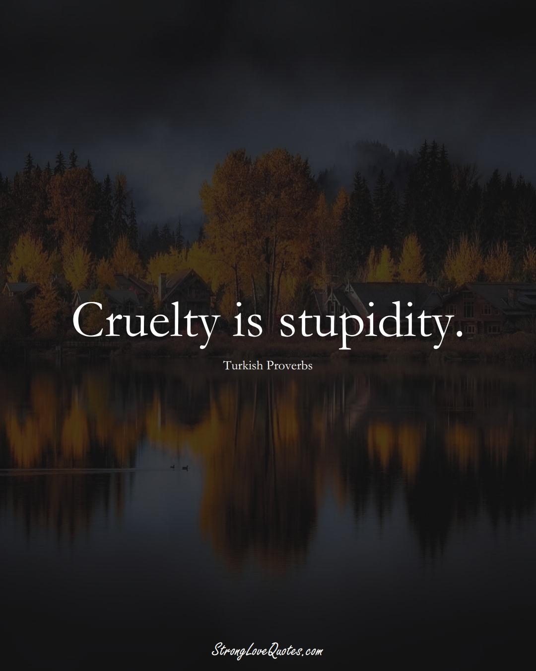 Cruelty is stupidity. (Turkish Sayings);  #MiddleEasternSayings