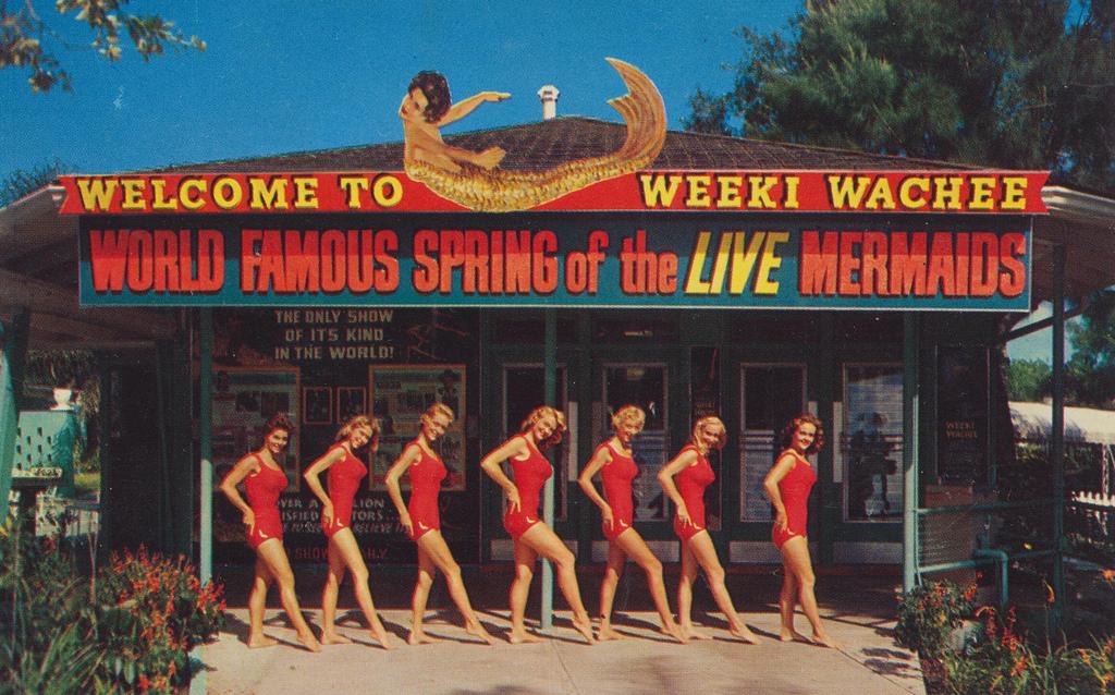 Floridas Weeki Wachee Spring Wonderful Color Photos Capture Amazing Underwater Performances By Mermaids In The 1960s Vintage Everyday