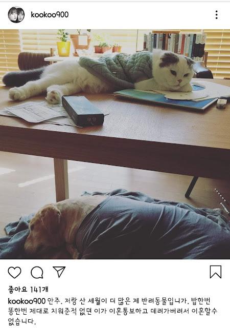 goo hye sun cat
