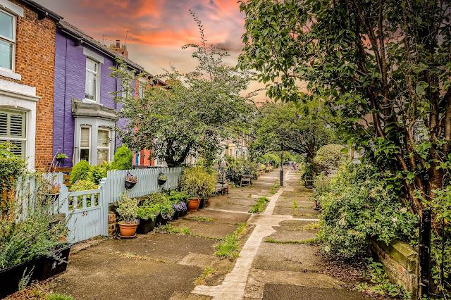 Sunset colourful Newcastle Street, Colour My World, Mandy Charlton, Photographer
