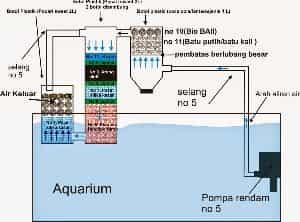 Skema Design Filter Aquarium