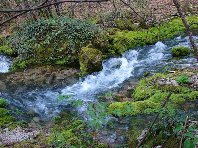 Река Биюк-Узенбаш вблизи своего истока