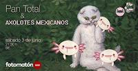 Concierto de Pan total y Axolotes mexicanos en Fotomatón Bar