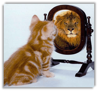 See the Lion in You!