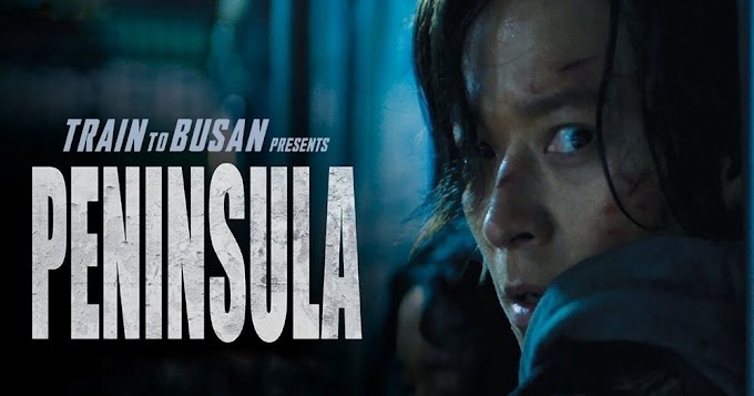 Train to Busan 2 (2020) Full Movie In Hindi [HD 720p]