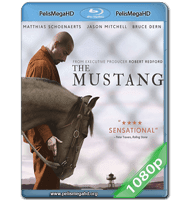 THE MUSTANG (2019) 1080P HD MKV ESPAÑOL LATINO