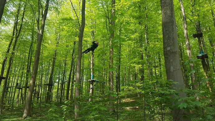 pitkä zipline kiipeilypuistossa