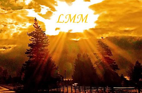 """Cette image est une photo qui montre un paysage. Au premier plan, on voit un grand sapin sur la gauche, suivi par d'autres du meme type, visibles sur les plans plus eloignes. L'image baigne dans une lumiere doree qui irradie d'un grand espace blanc laisse au milieu des nuages qui recouvrent autrement entierement le ciel. On imagine que la photo a ete prise au coucher ou au lever du soleil, mais celui-ci, dans la trouee, a ete remplace par les desormais celebres initiales du Marginal Magnifique """"LMM"""". La lumiere qui inonde le paysage semble donc projete par ces lettres-memes. Cette image simple mais belle et tres suggestive accompagne parfaitement a propos le nouveau poeme """"Fiat Lux"""", titre en latin qui signifie """"Que la lumiere soit"""". Dans ce nouveau texte de deux strophes, Le Marginal Magnifique s'affirme, dans la lignee d'un Victor Hugo, comme un poete prophete, une sorte de divinite au-dessus des hommes, descendue sur Terre pour les eclairer. Le Marginal Magnifique revendique une fois de plus son authenticite et son desir absolu de reveler la verite au commun des mortels tout en confondant les faux et les mauvais, en un texte d'inspiration biblique, mais non denue d'humour. Encore un tres grand poeme du Marginal Magnifique !!!"""