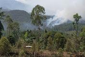 Kisah Misteri Gunung Lawu: Dari Suara Napas Hingga Suara Delman