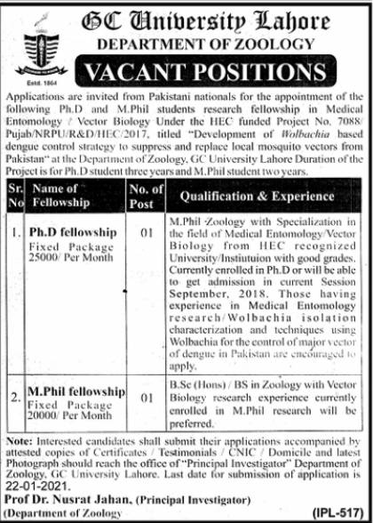 GCU Lahore Jobs College of Government 2021