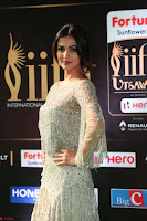 Sonal Chauhan in a stonework Floor Length Silver Designer Gown at IIFA Utsavam Awards March 2017 044.JPG