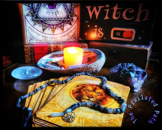 Forsight Friday reading using the Secret Language of Animals Oracle