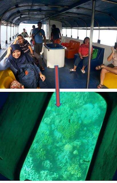 Kotak kaca pada kapal Katamaran ke Taman Laut Bunaken