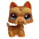 Littlest Pet Shop Pet Pairs Scottie (#1260) Pet
