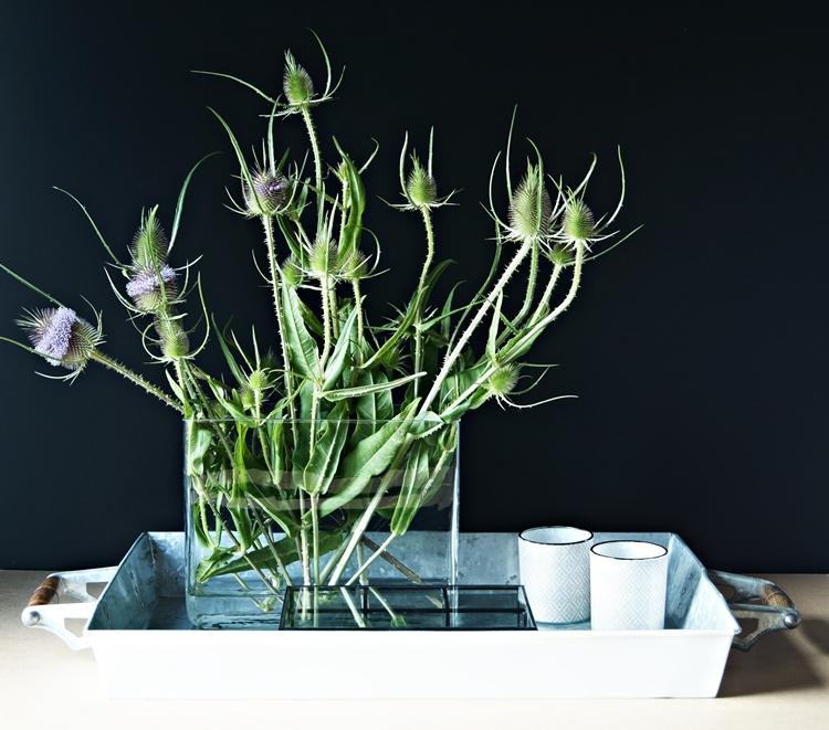 Blog + Fotografie by it's me! - Disteln in einer Glasvase auf einem dekorierten Zinktablett