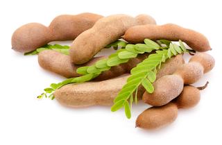 khasiat herbal si buah Asam