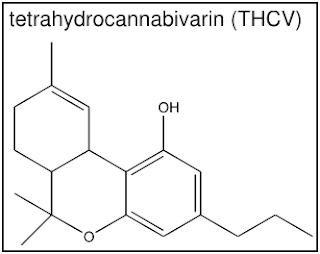 THCV TETRAHIDROCANNABIVARIN