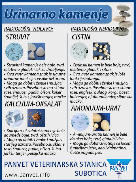 Vrste urinarnog kamenja kod pasa i mačaka