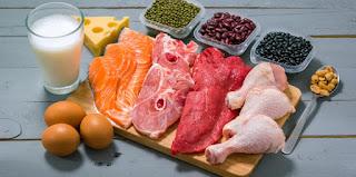 مصدر بروتين محلي الصنع SOURCES PROTEINES
