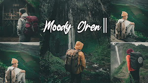 Download Preset MOODY Green Lightroom Mobile XMP & DNG