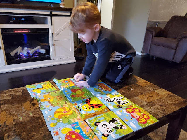 brody householder playing with animal jigsaw puzzle
