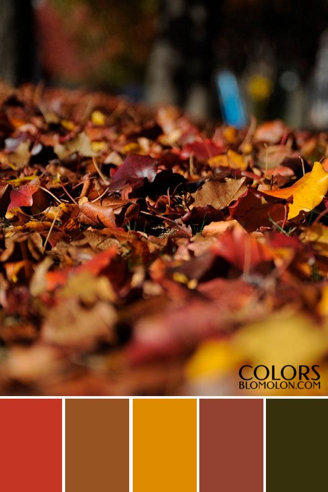 paletas_de_colores_mes_de_septiembre_7