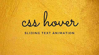 CSS Image Hover with sliding Text Animation