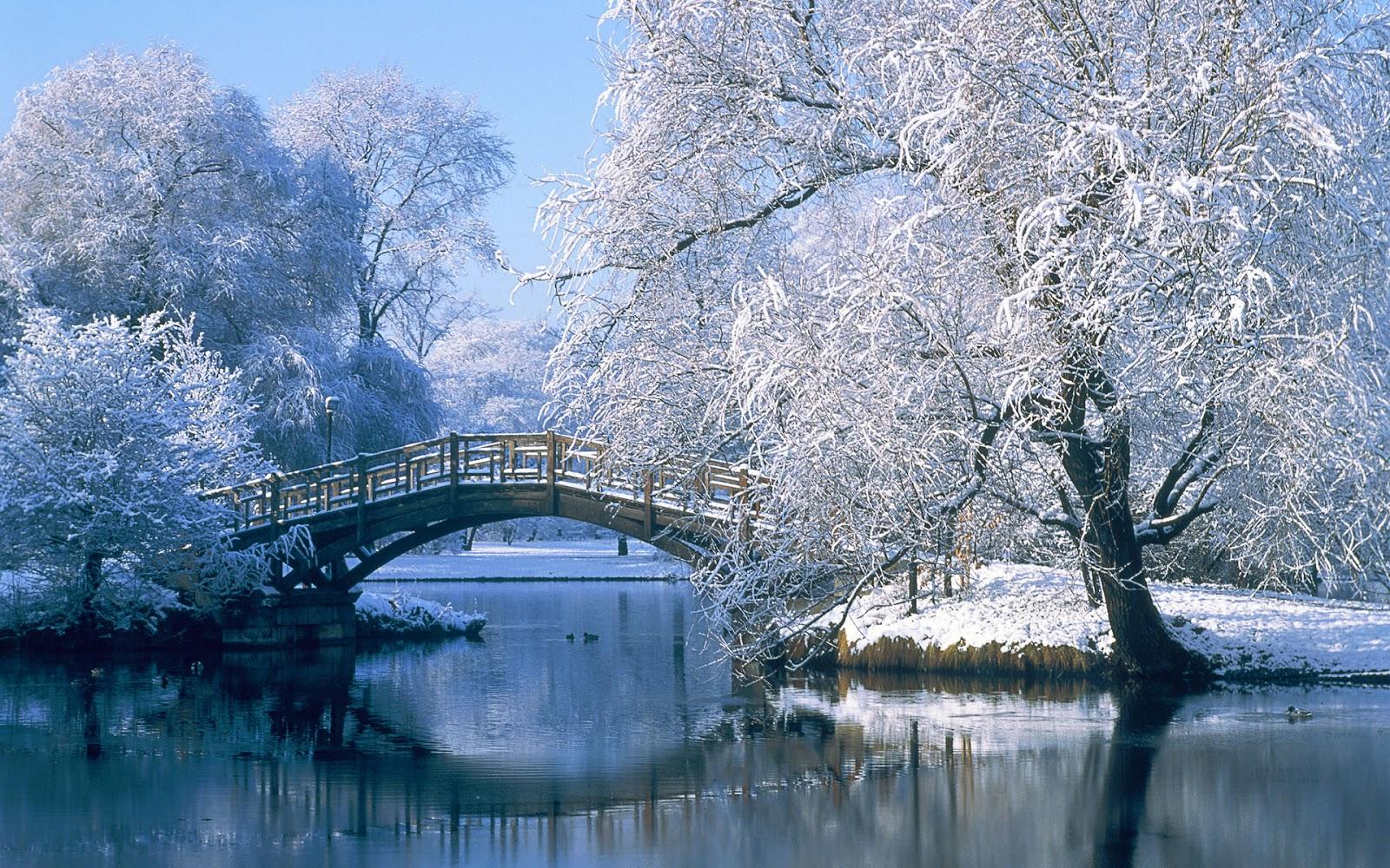 Le foto di paolo sfondi per desktop naturalistici for Immagini invernali per sfondo desktop