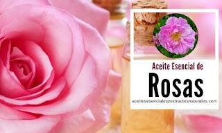 El aceite esencial de rosas es de los más buscados por sus propiedades afrodisiacas