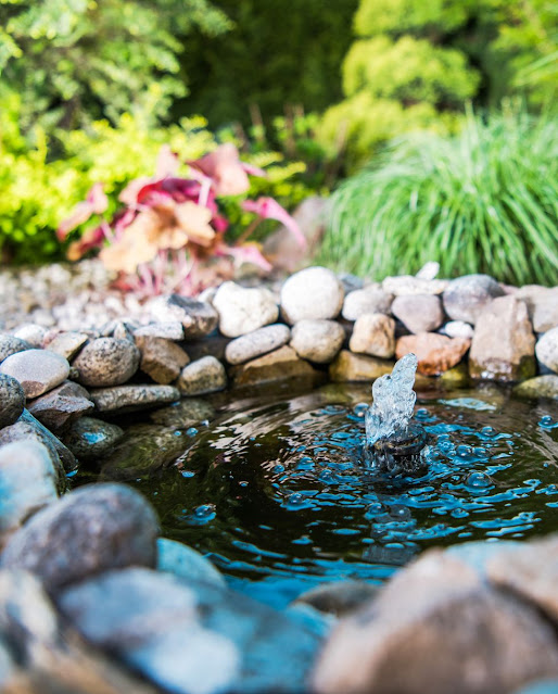 Garden place little pond royalty free image