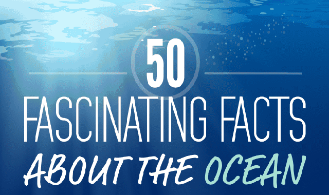 50 Fascinating Facts about the Ocean #infographic