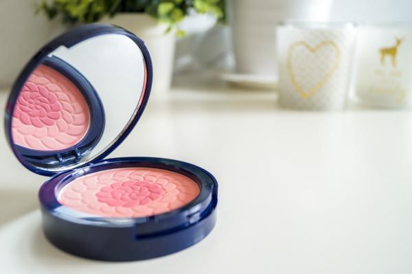 Hübsches Blush Puder Make-up Gesicht